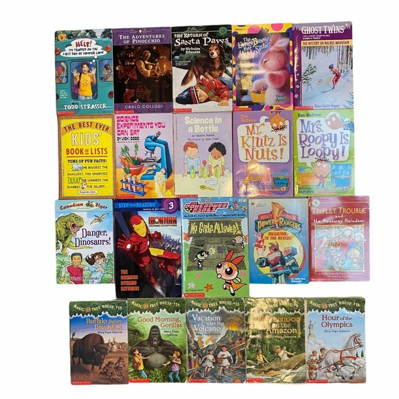 Scholastic Chapter Book Lot-20 books